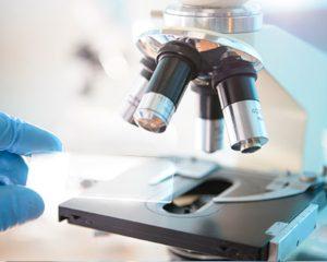 https://www.marivet.pl/wp-content/uploads/2018/11/diagnostyka_laboratoryjna-300x240.jpg